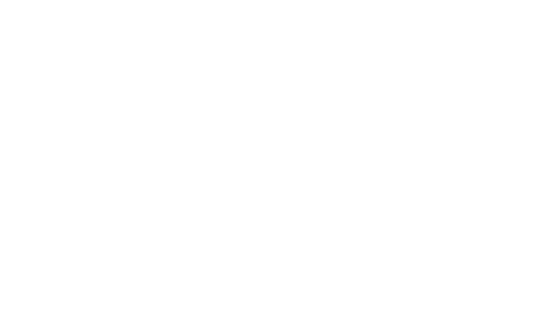 logo olx biale